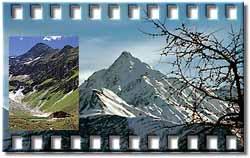 bergersee 2