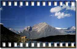 bergersee 5